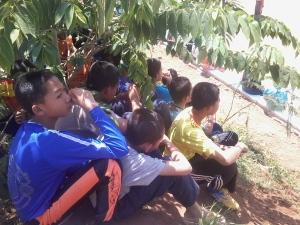 Foto-0506